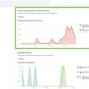 Statystyki - Gdzie Klienci Widzą Twoją Firmę