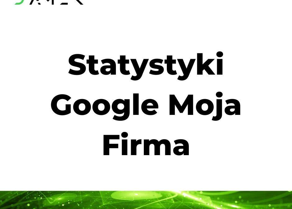 Statystyki Google Moja Firma